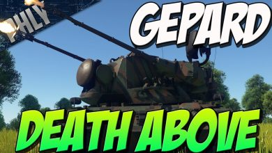 NO-PHLY-ZONE-Gepard-SPAA-35mm-AutoCANNONS-War-Thunder-Tanks